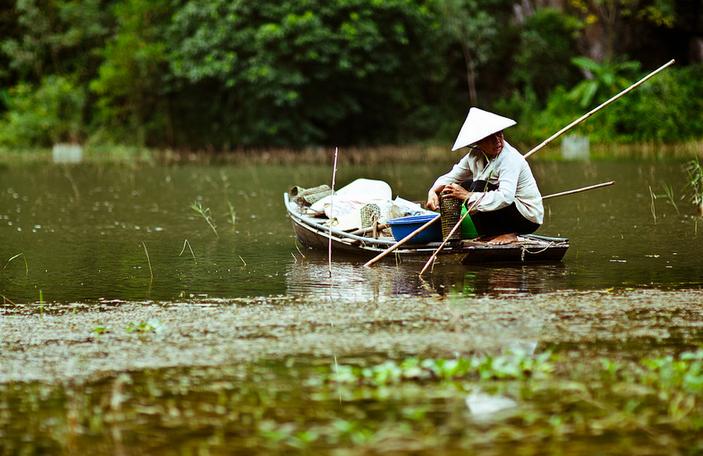 Cuộc Sống Mưu Sinh Bên Dòng Sông Ngô Đồng